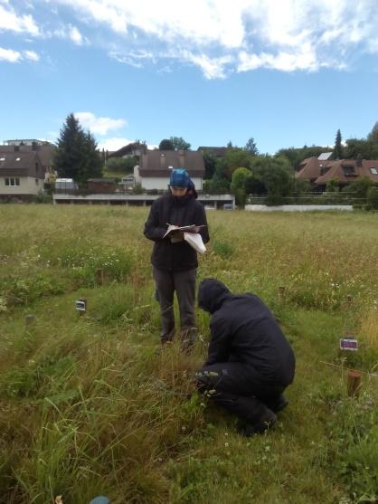 PaNDiv field helpers! Ana M. Sabater and Bjarke Madsen