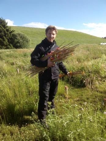 Bjarke Madsen lending a hand on the field - PaNDiv